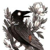 烏鴉(crow)