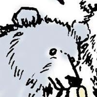 Penana小灰熊